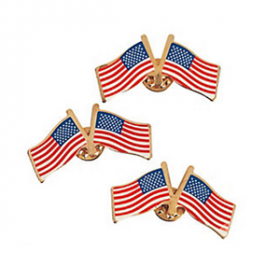 Double American Flag Pins